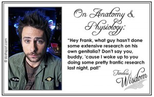 Charlie Kelley (Charlie Day) on Anatomy and Physiology
