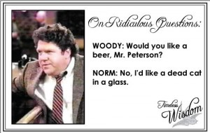 Norm Peterson on Ridiculous Questions