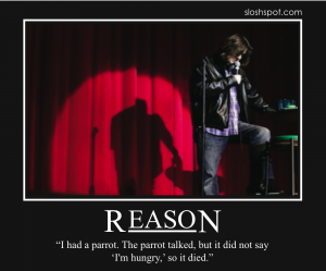 Mitch Hedberg on Reason