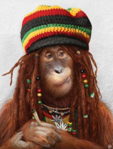 Anthropomophism Animals Dressed as Humans - Monkey Bob Marley
