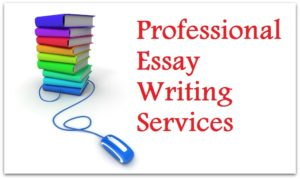 essay for students